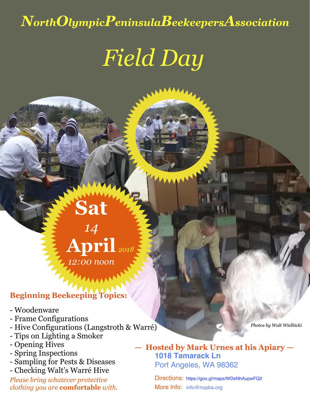 Field Day.jpg