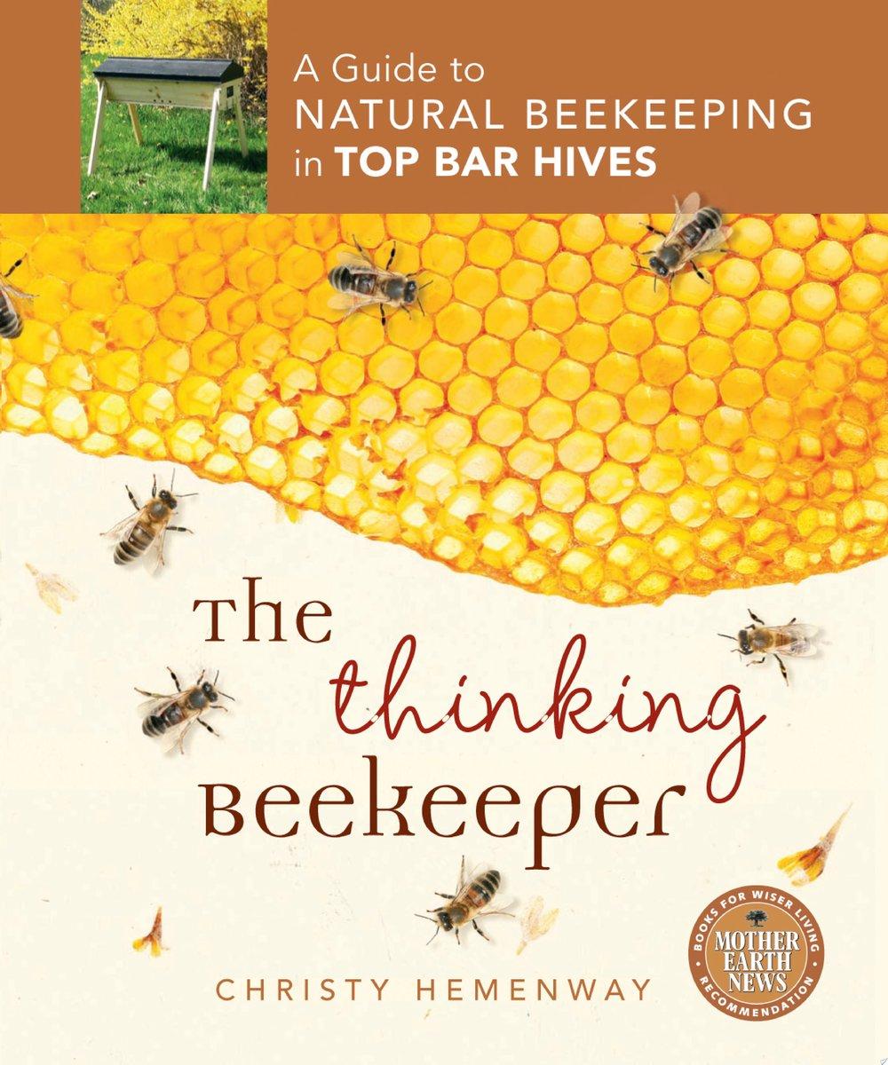 Thinking Beekeeper.jpg