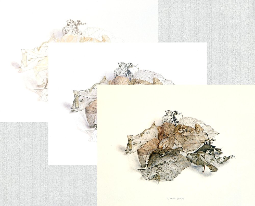 aquarel voorbeeld.jpg