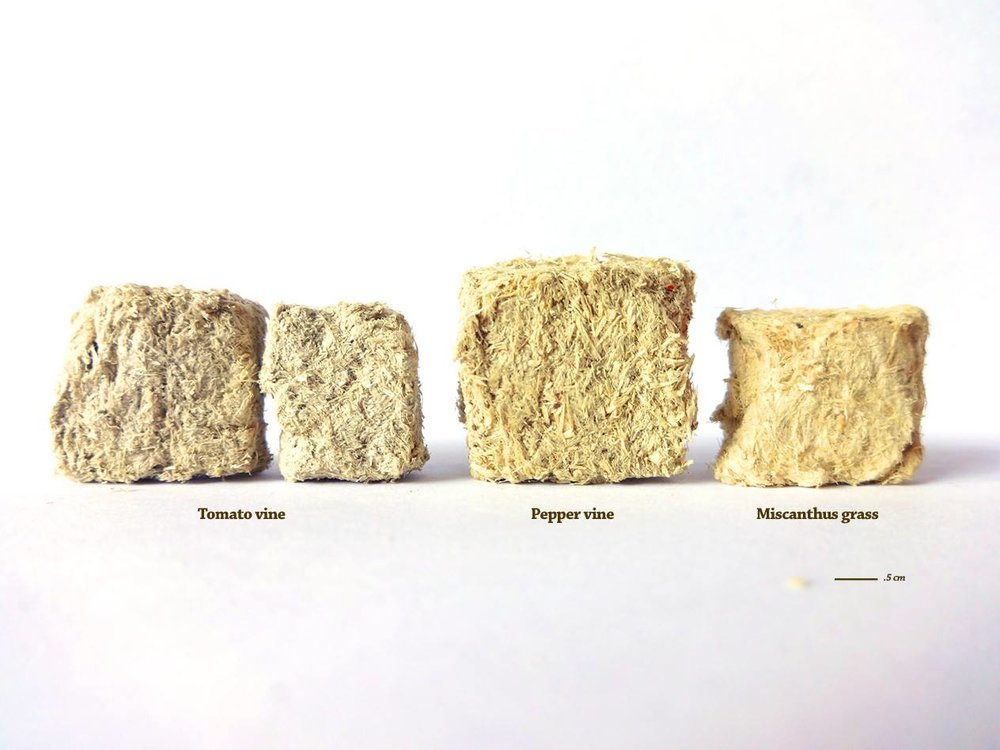 Fiber Research Samples w:Labels.jpg