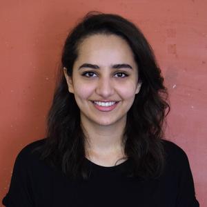 Maryam Shehzad