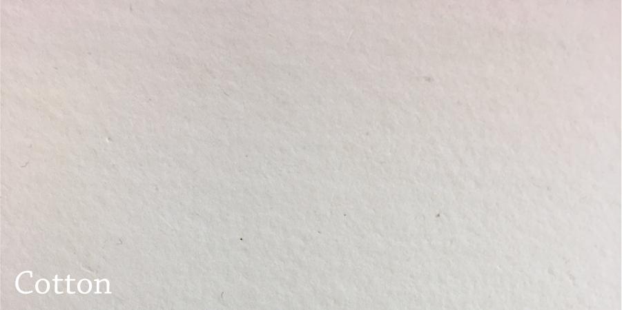 Paper Catalog-02.jpg