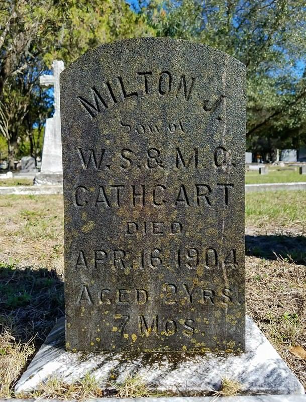 T  he Good Cemeterian, 2018