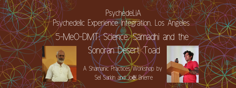 5-MeO-DMT: Science, Samadhi and the Sonoran Desert Toad — The