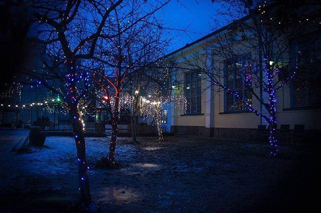 Regrann from @sohventures -  Light Garden Take 2, 2018.  #helsinki #korjaamo #latergram #töölö #urbanphotography #nightphotography #lights #colors #atmosphere #moodygrams #trees #garden #winter #thecreative #visualsgang #dusk #artsy #artdeco #architecture #whatisee #seemycity #branches #streetcollectors #visithelsinki #detailsofhelsinki #igershelsinki #helsinkiofficial #canon #canon500d #canontalvi