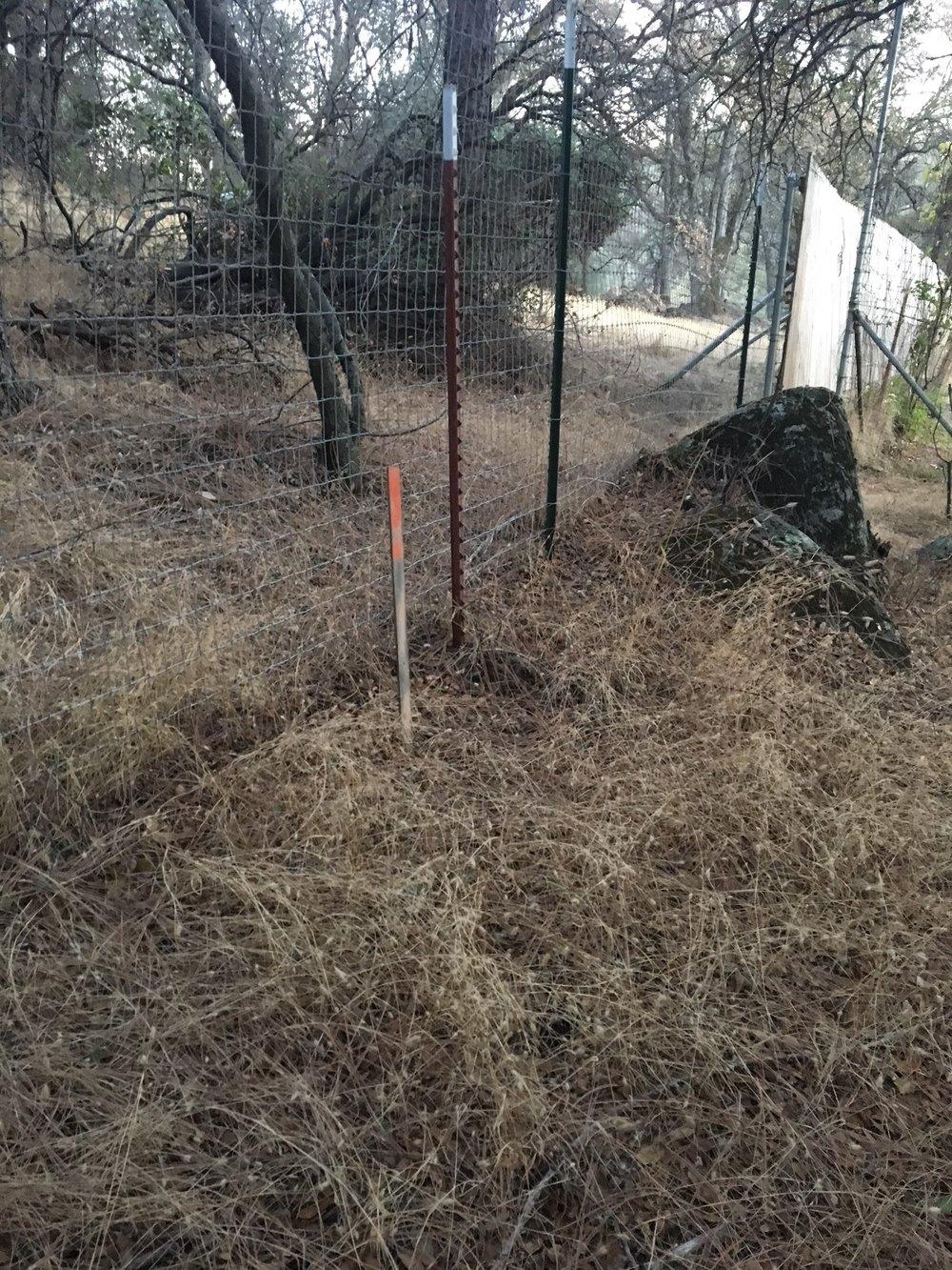 RG fence line w cntrl pnt.jpg