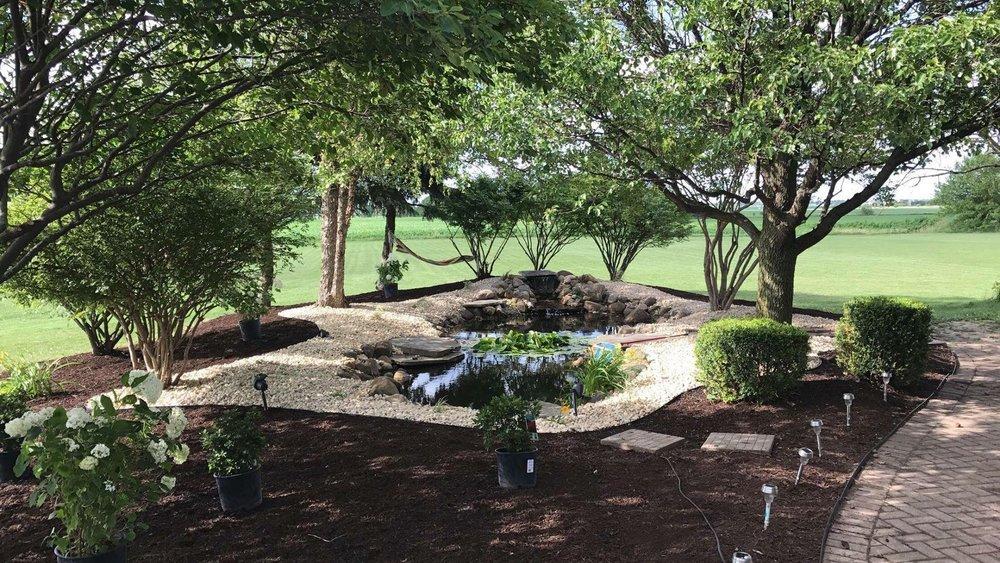 landscaping_pond_trees.jpg
