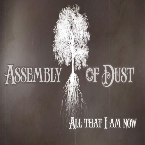 assembly of dust.jpg