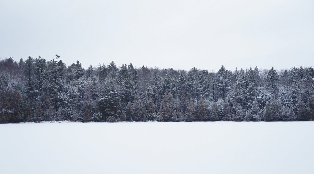 Winter Lake.JPG