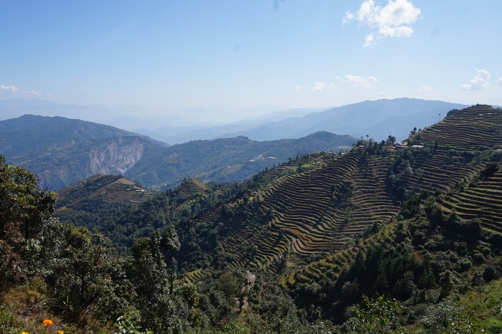 ...where terraced fields sag from green valley hills ...