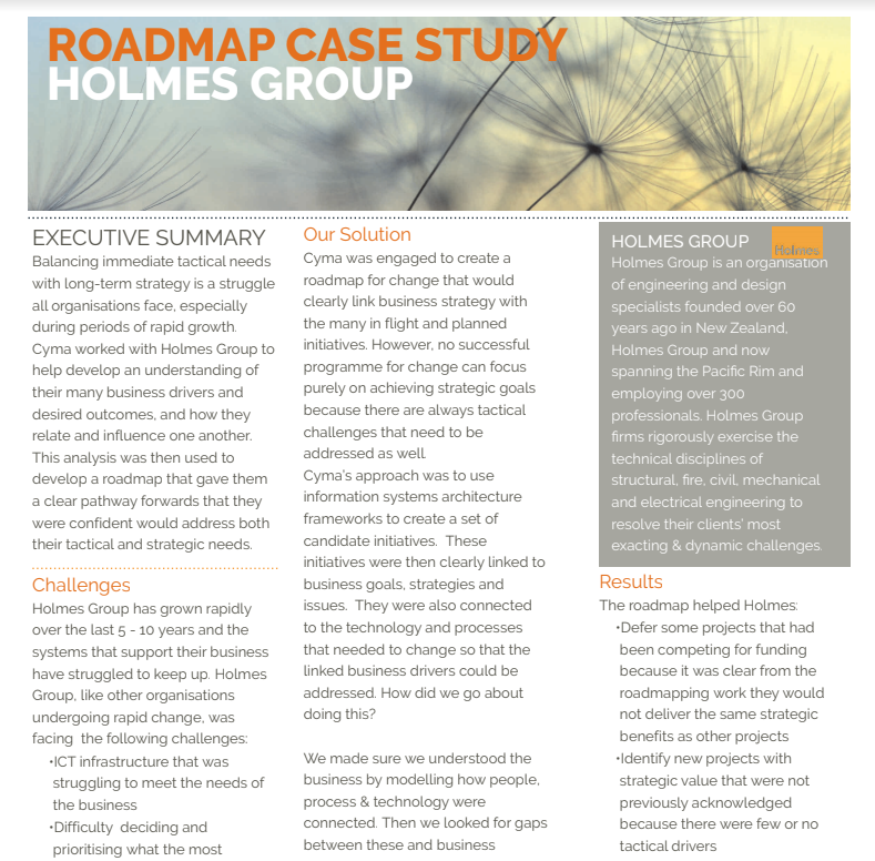 Road Map Cases Study for Holmes Group