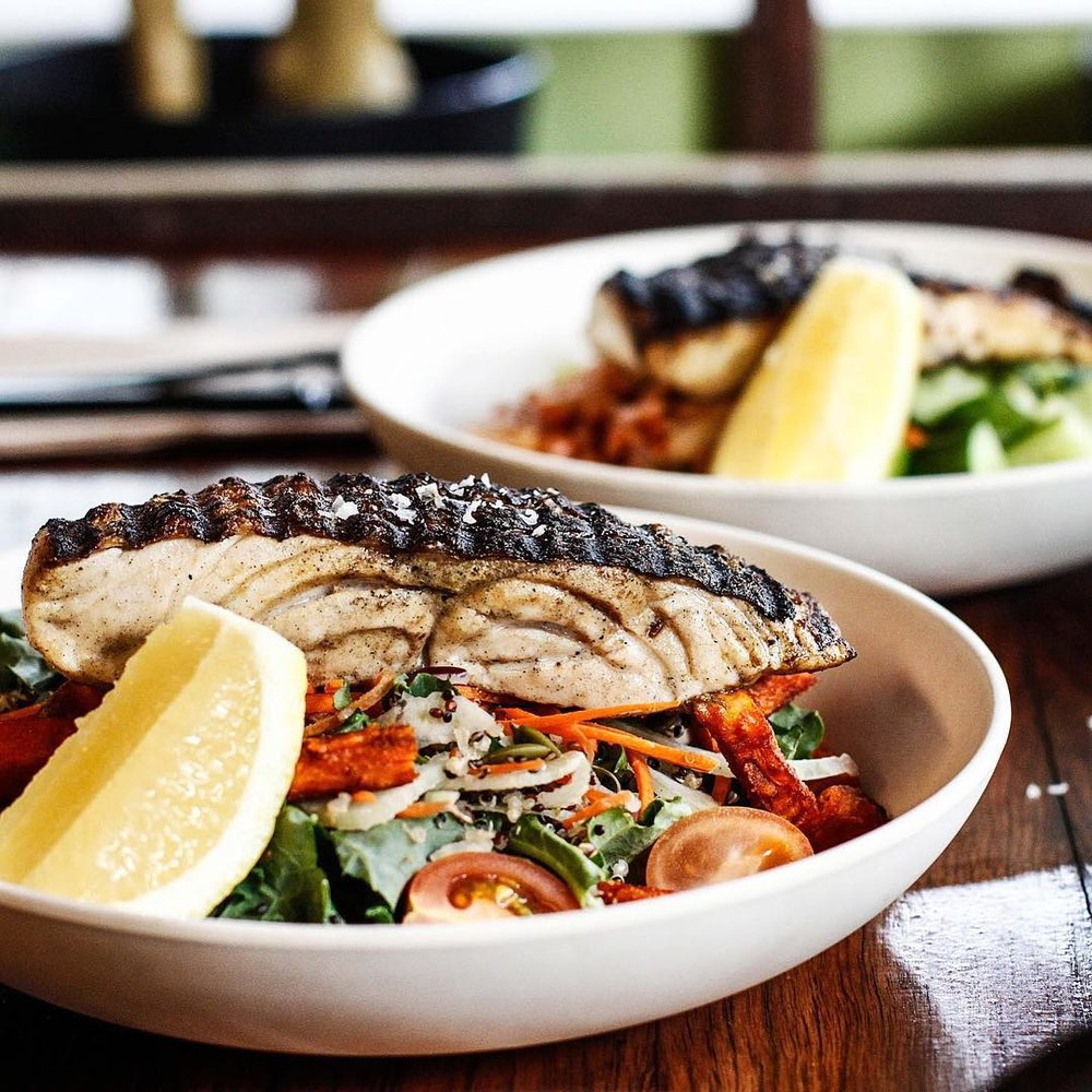 poke is just one of the seafood dishes at salmon & bear seafood restaurant in sydney