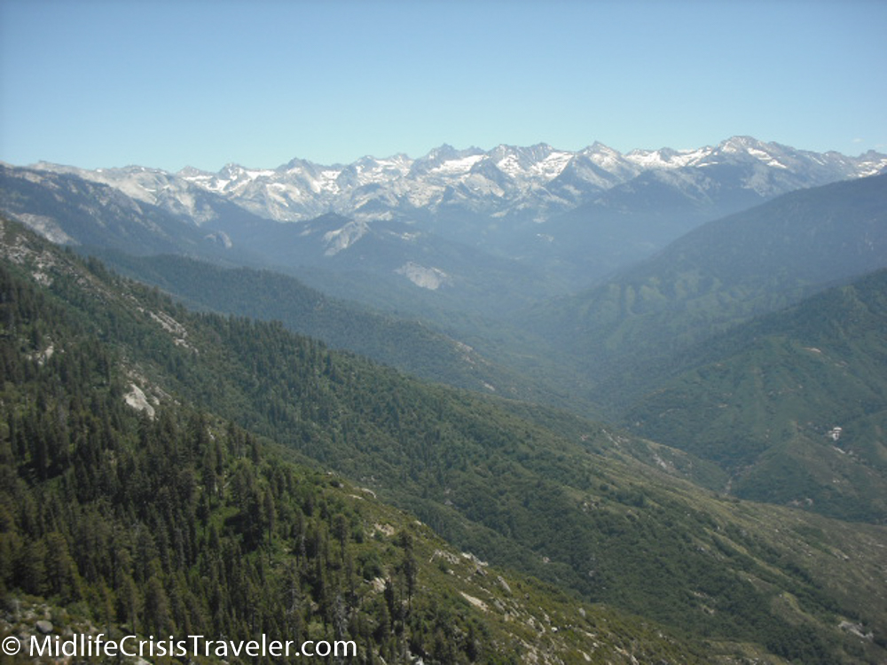 Sequoia-115.jpg