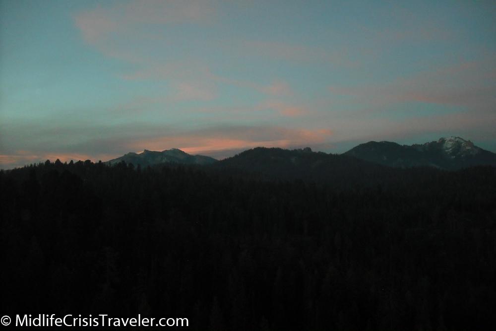 Sequoia-178.jpg