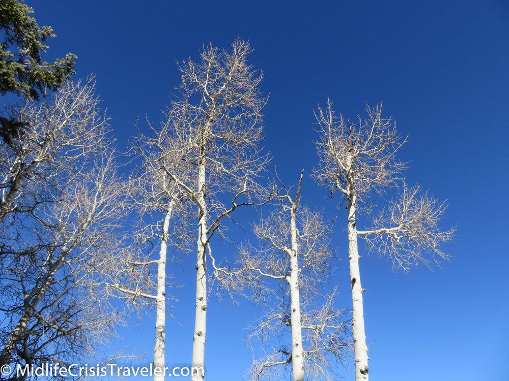 Bryce Canyon NP-110.jpg