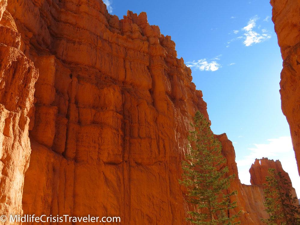 Bryce Canyon NP Navajo Loop-101.jpg