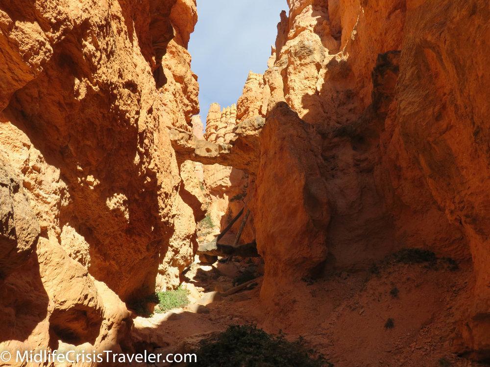 Bryce Canyon NP Navajo Loop-93.jpg