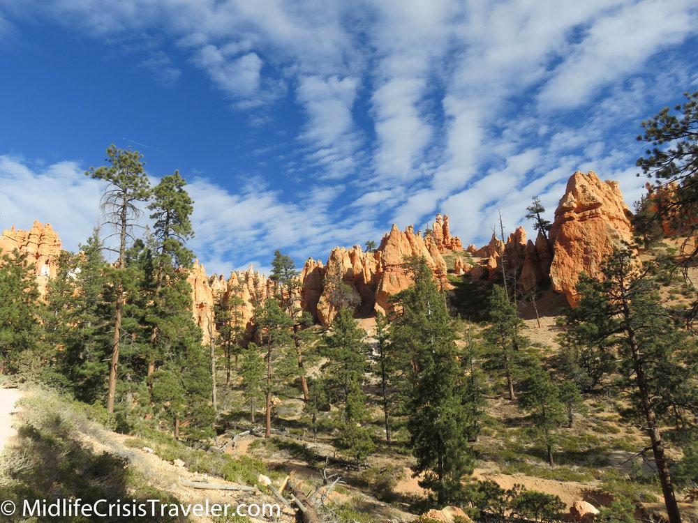 Bryce Canyon NP Navajo Loop-77.jpg