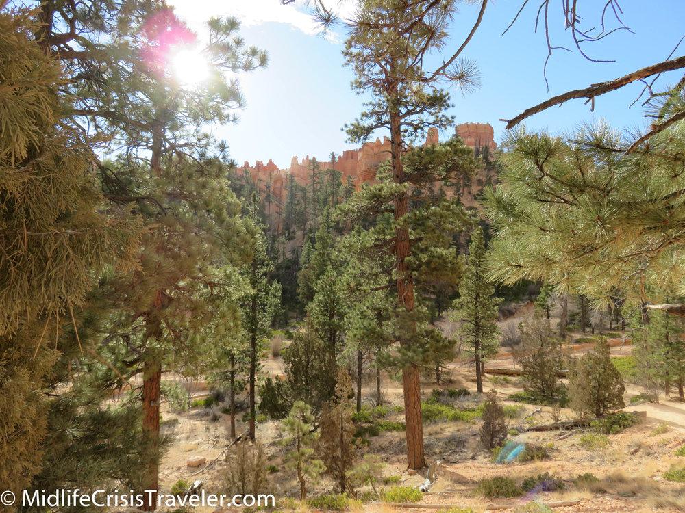 Bryce Canyon NP Navajo Loop-69.jpg