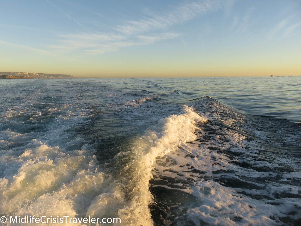 Whale Watching-39.jpg