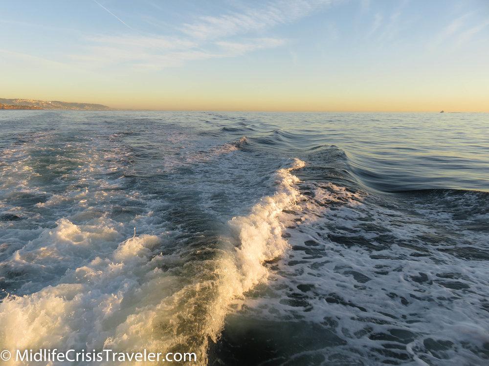 Whale Watching-38.jpg