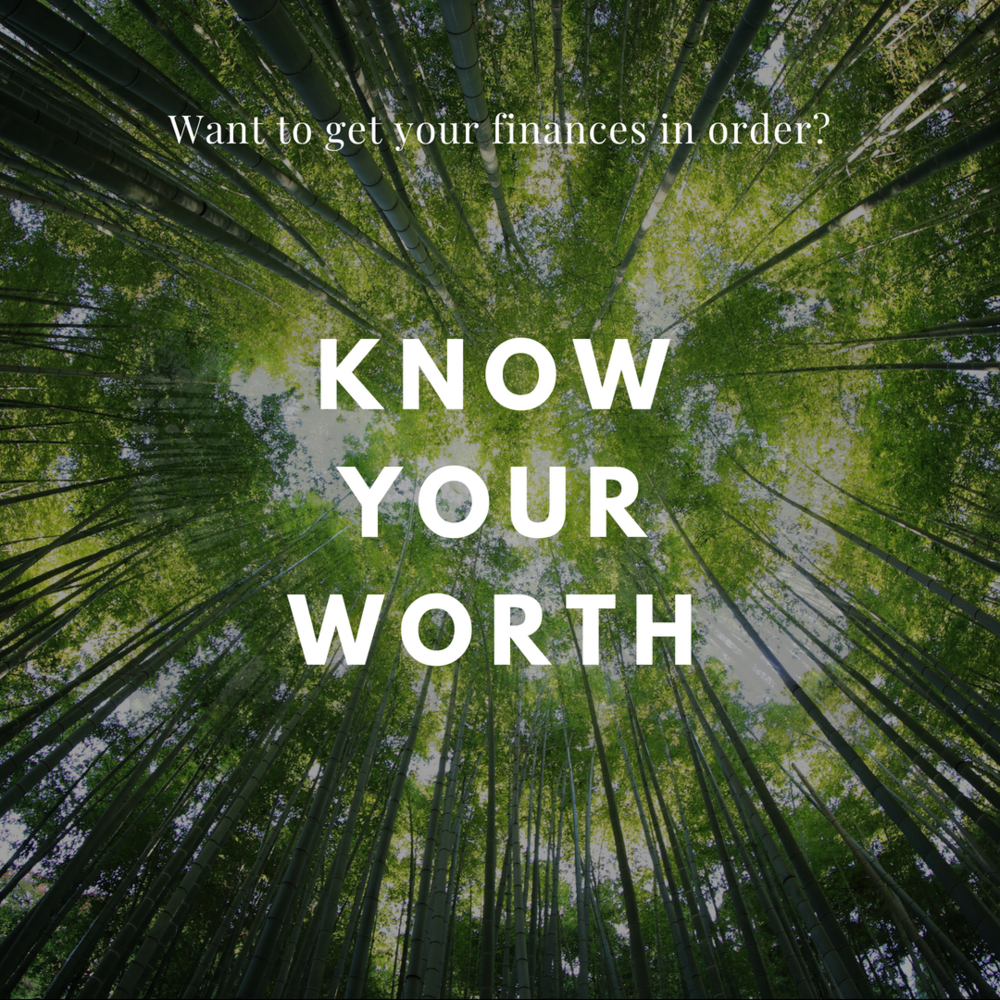net worth worksheet  What you OWE minus what you OWN.  Basic, right?  But how many of us have actually seen our finances laid out like that?  The numbers don't lie!   Net worth is a great starting point for action and allows you to see your progress over time.  Get it  here .