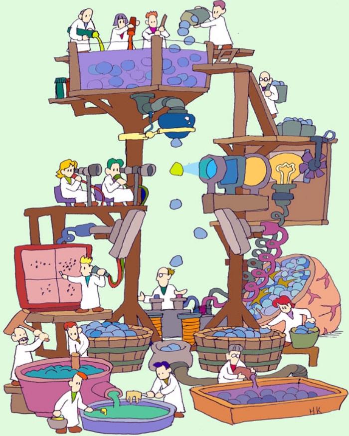 FACS machine by Kawamoto