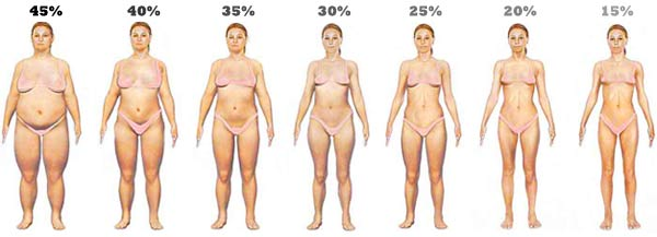 body-fat-levels-women21.jpg