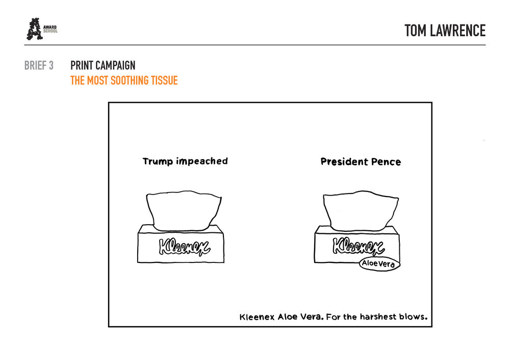 TRUMP:PENCE NEW.jpg