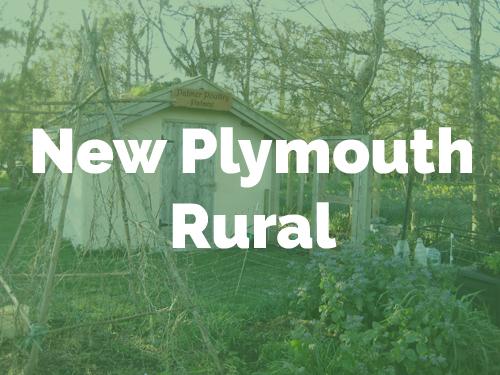 Np Rural.jpg