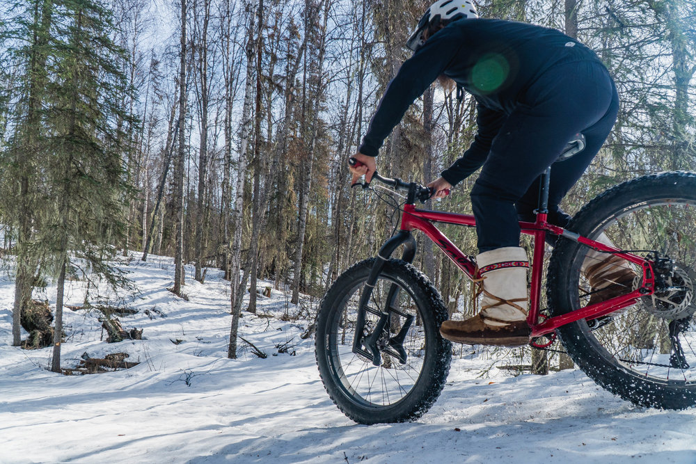 - forested mountain bike trails
