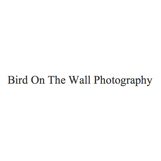 BIRD ON THE WALL PHOTOGRAPHY   To the country girl that took a part of my heart when I first came into the industry, she always captures such intimate effortless moments, is also not a diva (note, I clearly don't like divas)