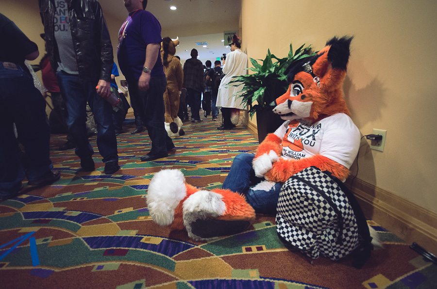 FurCon Fox getting a charge