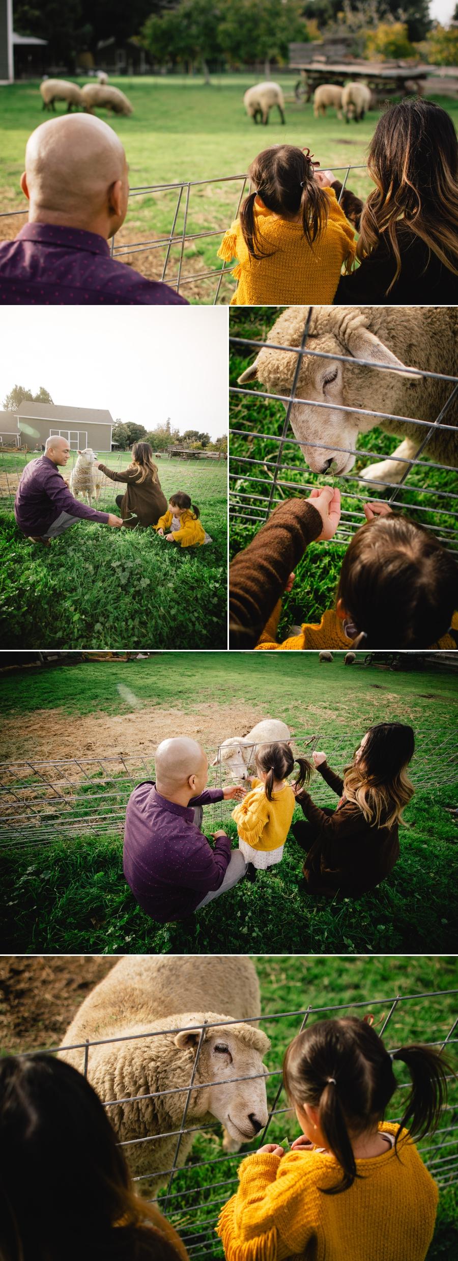 atanque-family-blog-5