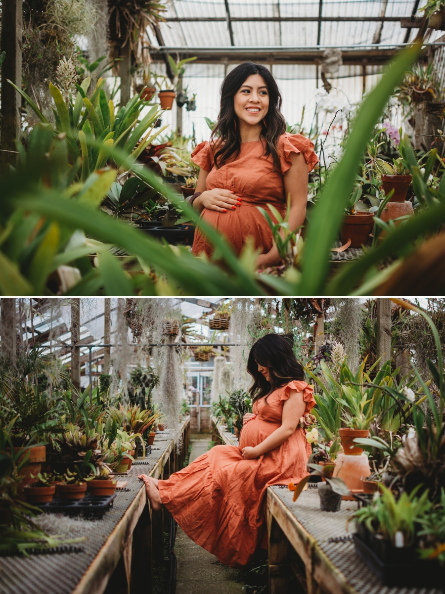 Bay Area Family Maternity Photographer Shelldance Gardens 25