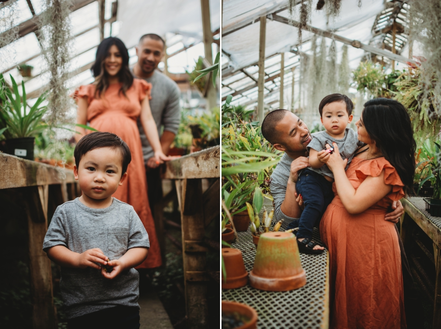 Bay Area Family Maternity Photographer Shelldance Gardens 41