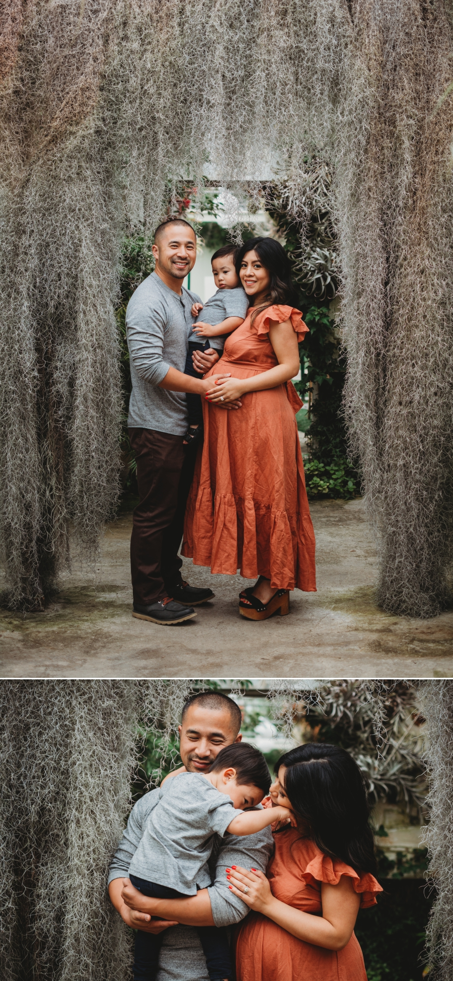 Bay Area Family Maternity Photographer Shelldance Gardens 44