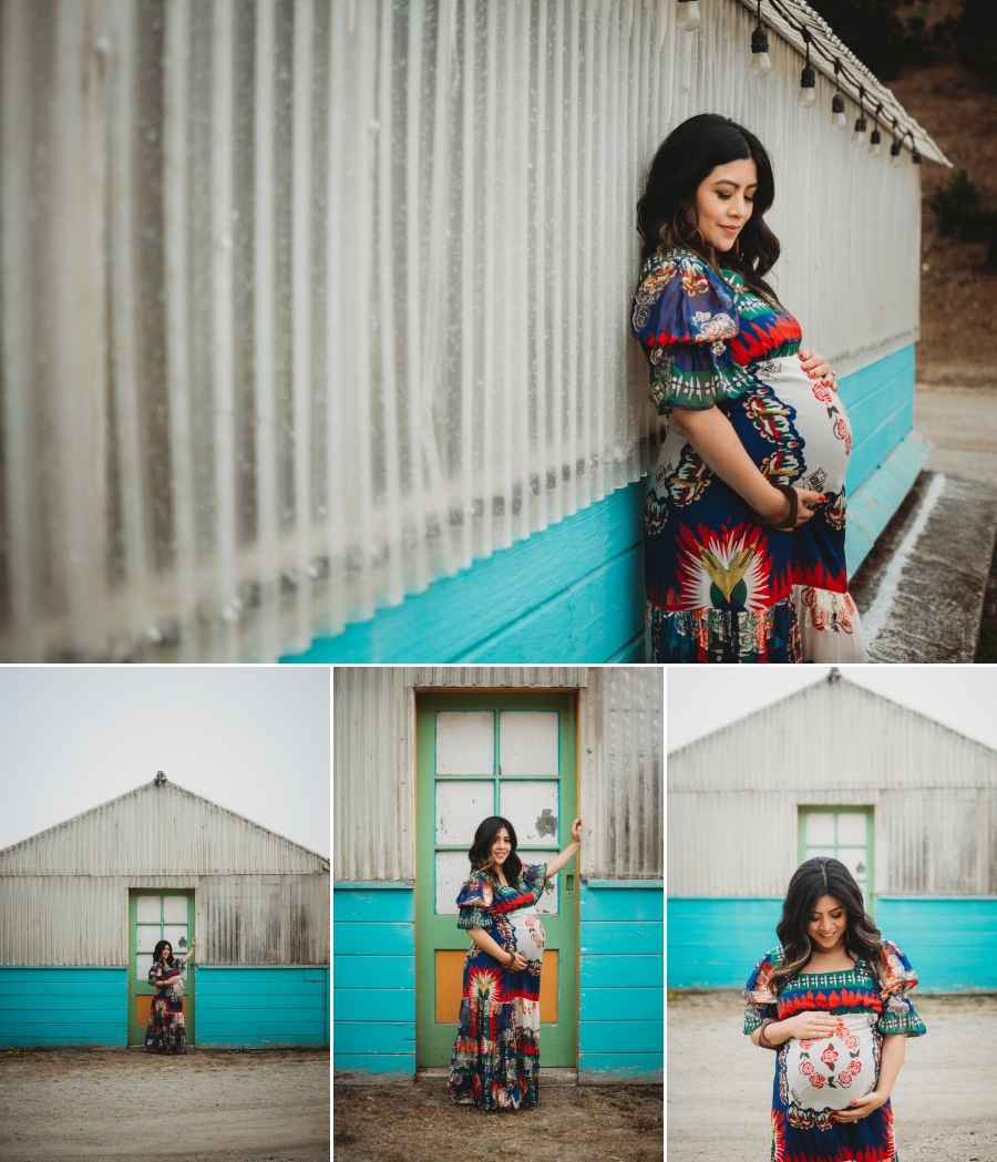 Bay Area Family Maternity Photographer Shelldance Gardens 48
