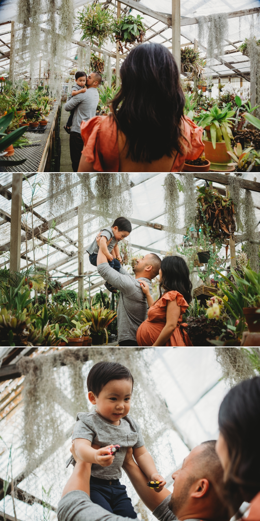 Bay Area Family Maternity Photographer Shelldance Gardens 43