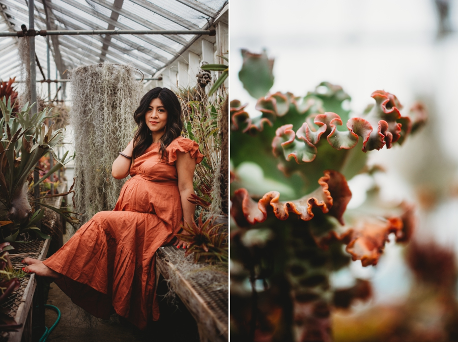Bay Area Family Maternity Photographer Shelldance Gardens 5