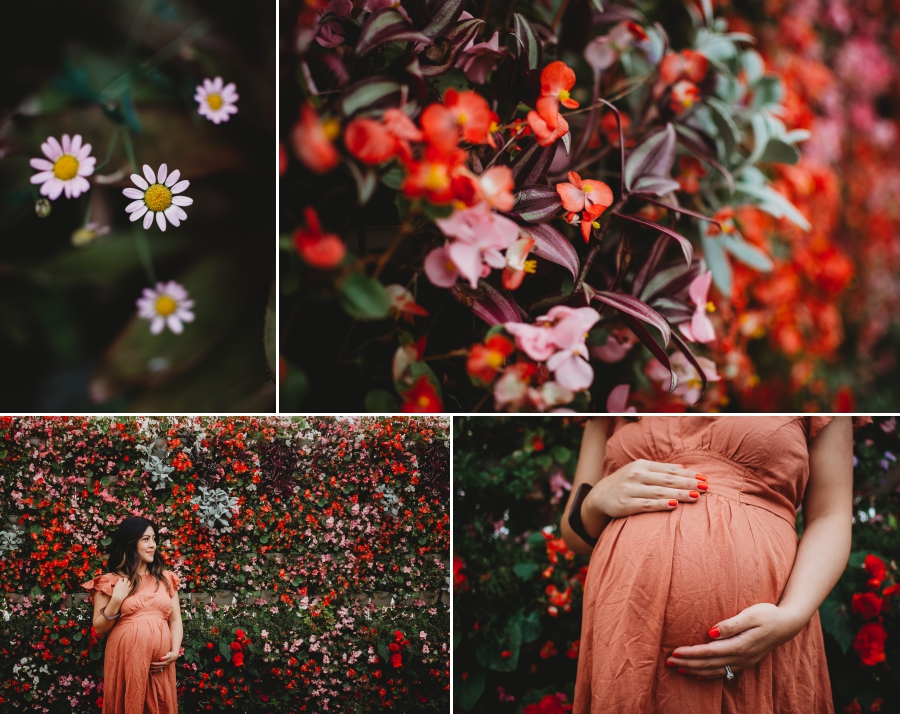 Bay Area Family Maternity Photographer Shelldance Gardens 7
