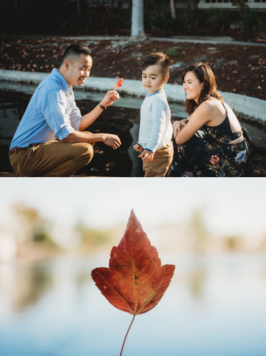 AHA FAMILY 2