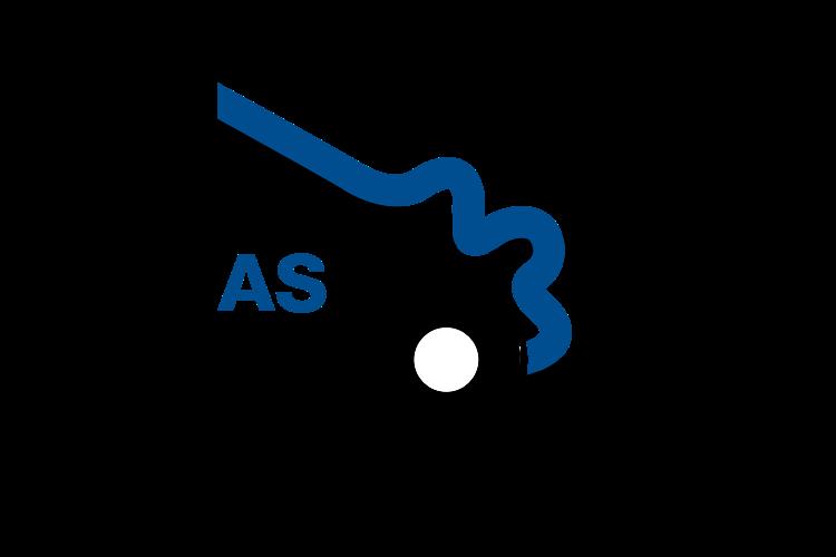 asp website.png