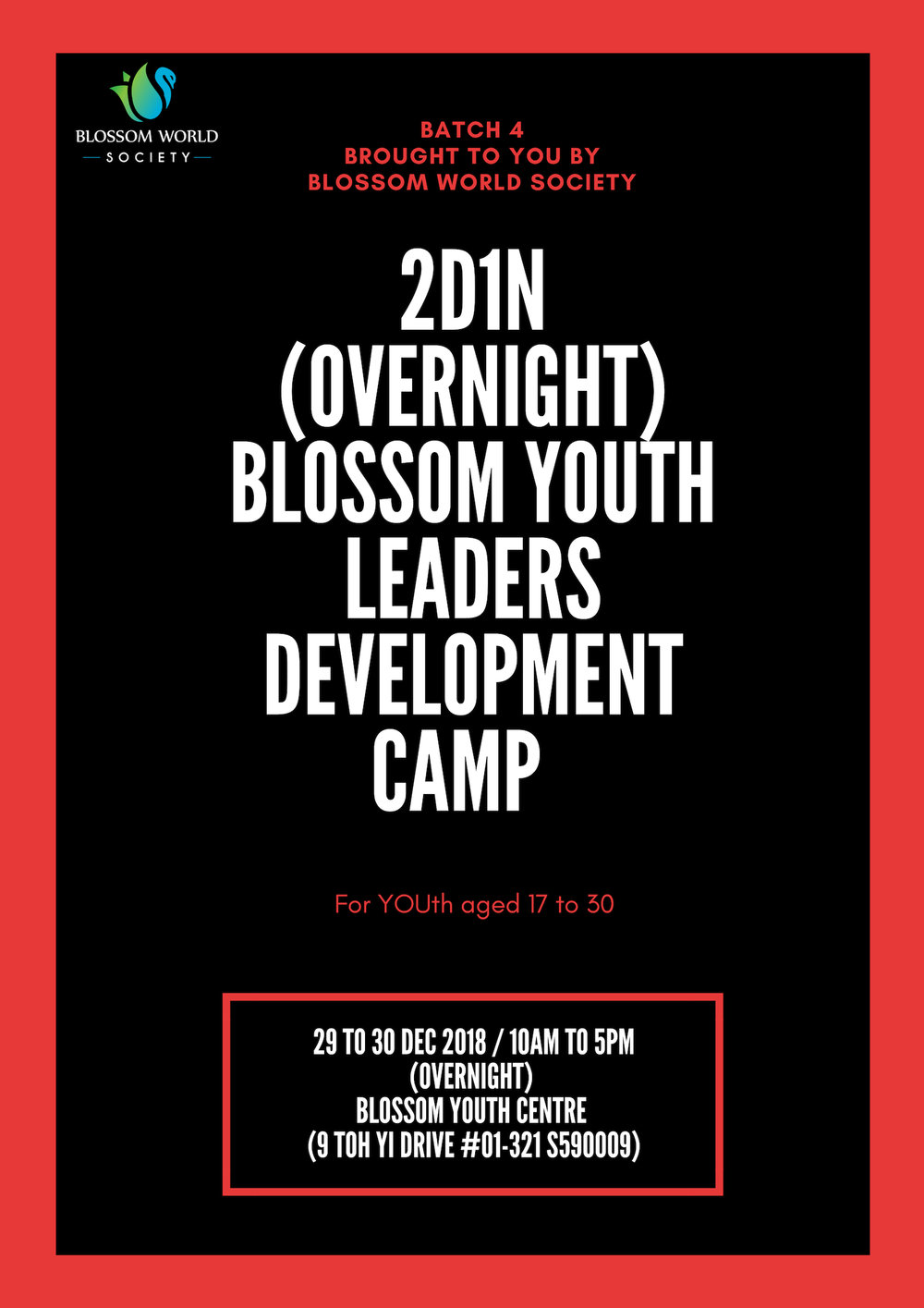 B4 BYDP Camp poster.jpg