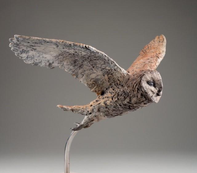 Caroline Bromley-Gardner - Barn Owl in flight.jpg