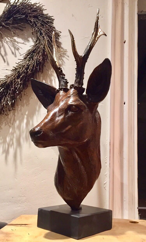 Roe Deer bust.jpg