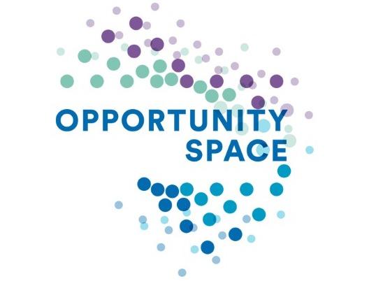 opportunity space.jpg
