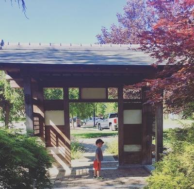 Japanese Friendship Garden in Carmel