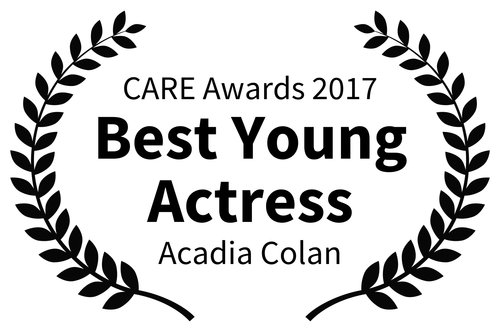 AWARDS---CARE-Awards---2017_ACADIA.jpg