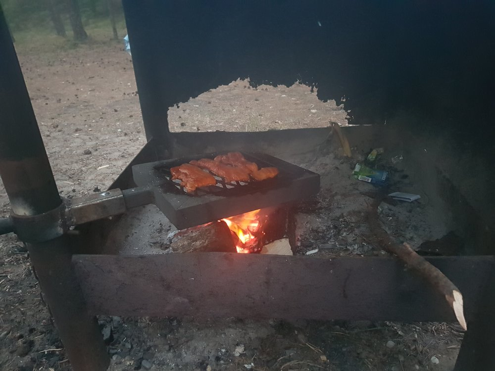 Shashlik sizzeling on the fire